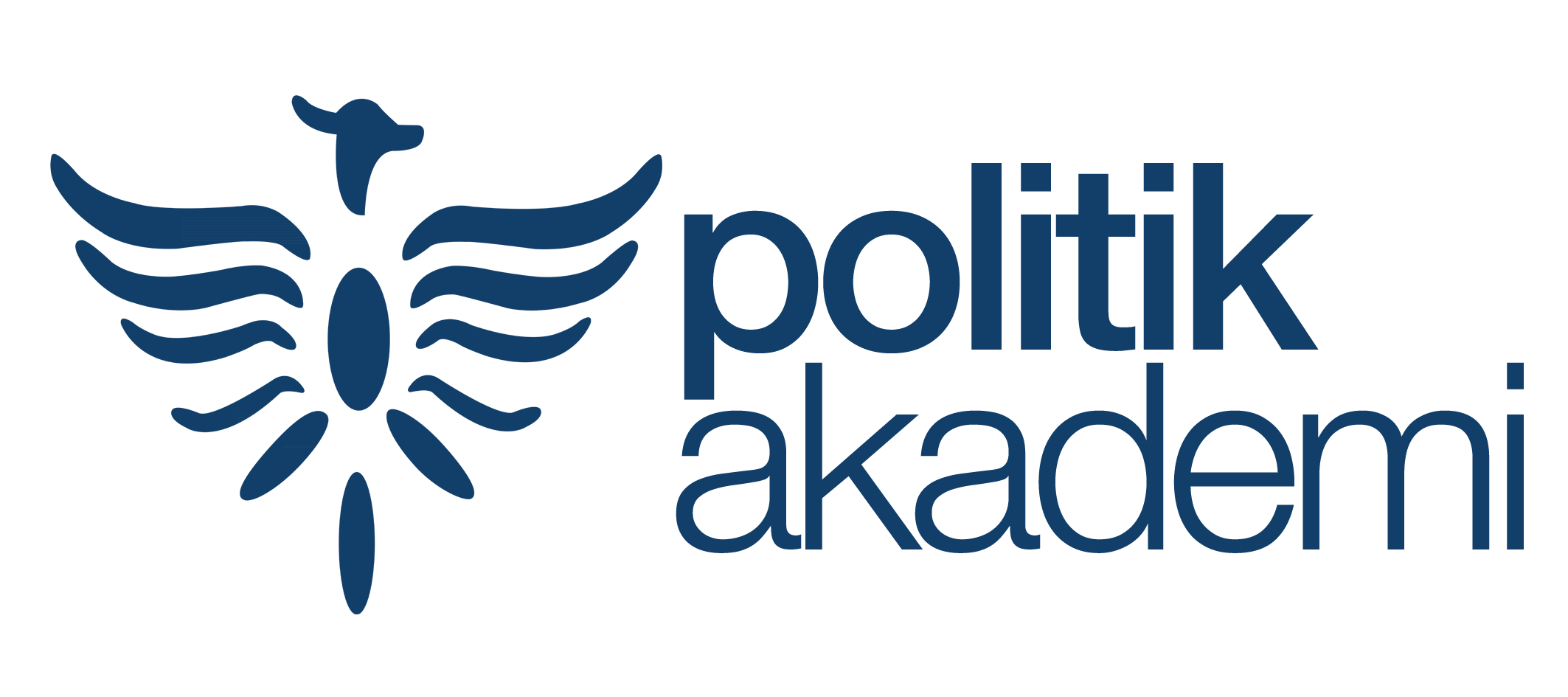 Politik Akademi
